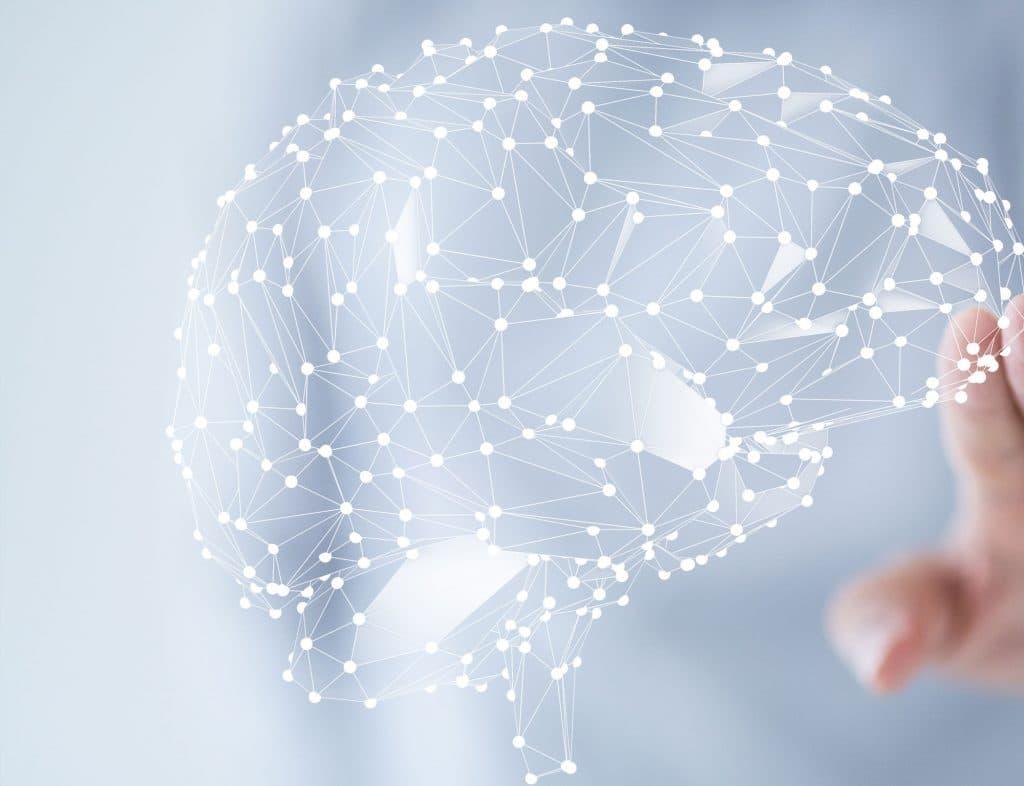 Psycho-Neuro-Immunologie - Die sich vernetzenden Synapsen im menschlichen Gehirn